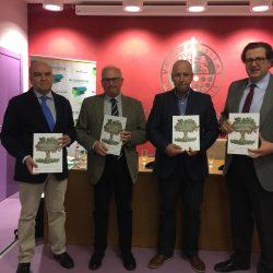 Valorización Energética de Subproductos del Olivar y sus Industrias de Transformación