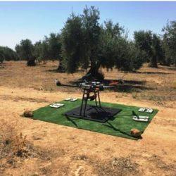 AGRICULTURA DE PRECISIÓN. PRIMEROS VUELOS DE NUESTROS DRONES.