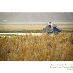XI Certamen de Fotografía FCRJ – Naturaleza y Economía –