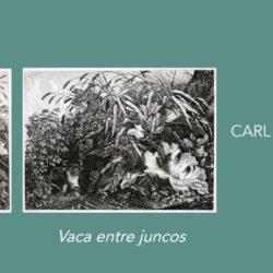 ESPACIO LA RURAL Vaca en la Marisma y Vaca entre Juncos Carl Wilhelm Kolbe El Viejo