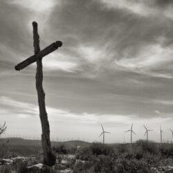 EXPOSICIÓN DE FOTOGRAFÍA XI CERTAMEN DE FOTOGRAFÍA FUNDACIÓN CAJA RURAL DE JAÉN Naturaleza y Economía